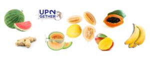 Import Export frutta da e per l'Africa con UP2gethr