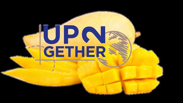 Frutta esotica 2021: disponibilità vendita partita di mango